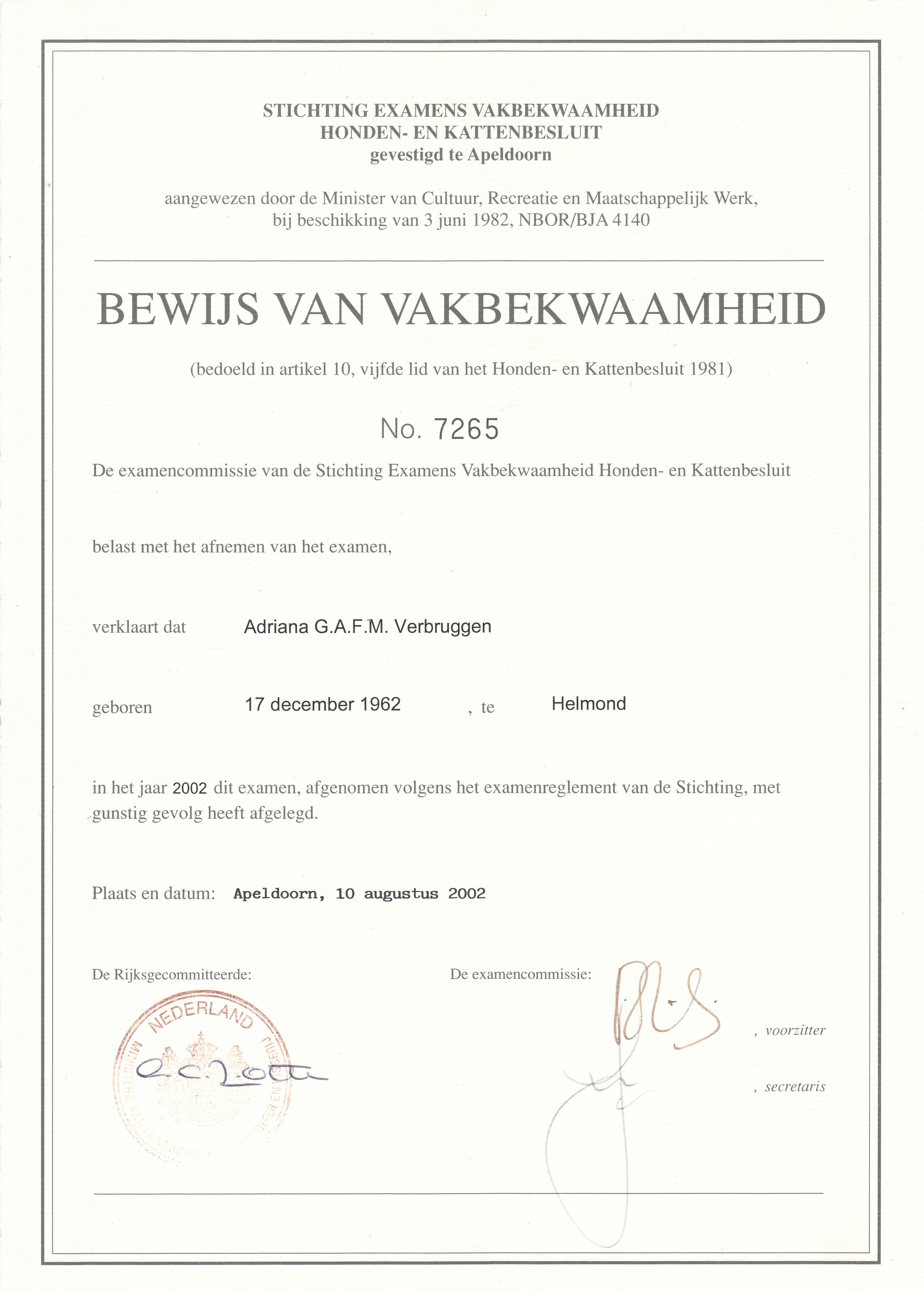 vakbekwaamheid diploma